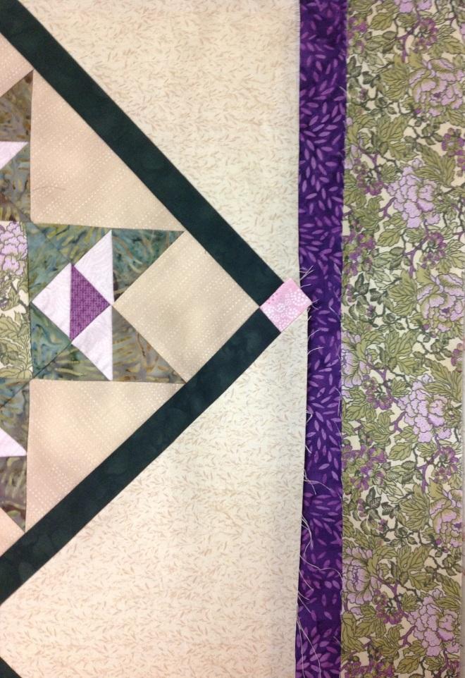 purpleborder